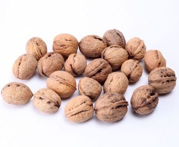 Picture for category In-shell Walnuts